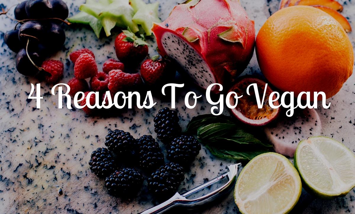 4 Reasons To Go Vegan