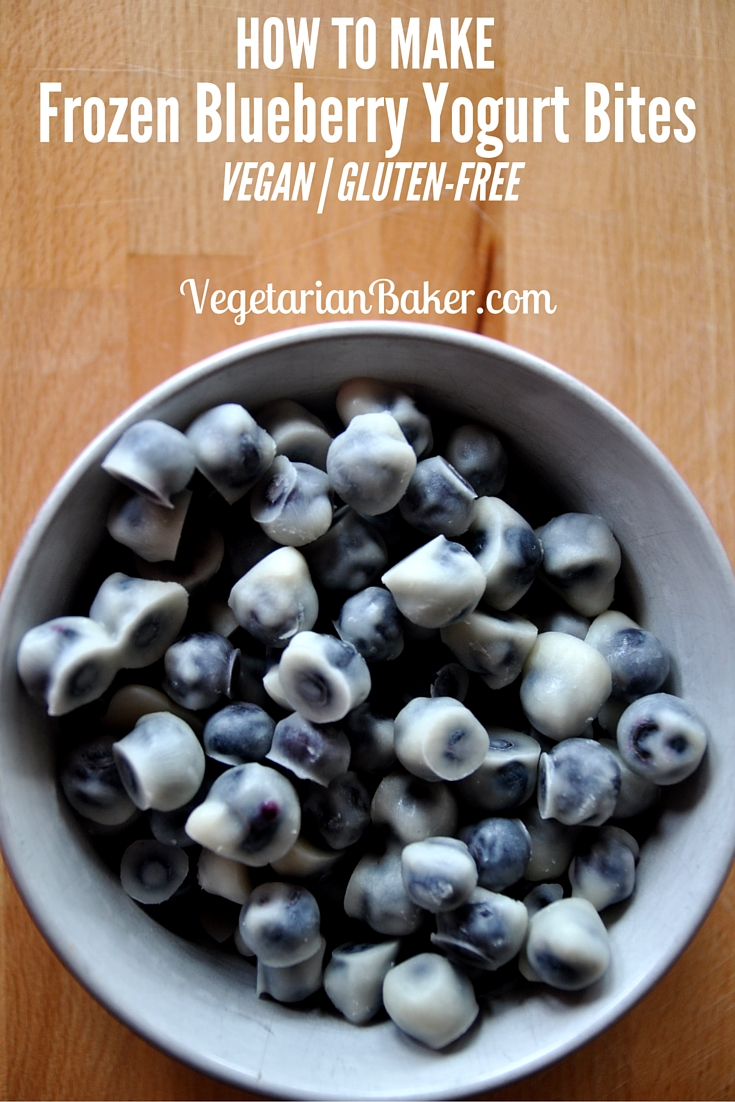How To Make Frozen Blueberry Yogurt Bites | Vegan & Gluten-Free