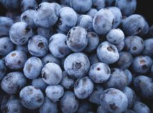 How To Make a Vegan Blueberry Pomegranate Matcha Smoothie